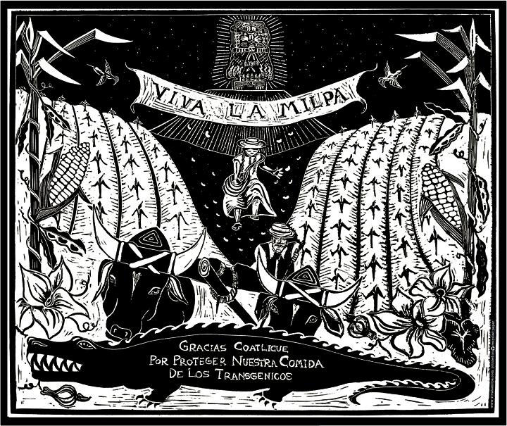 Viva La Milpa  By Chula Gemignani